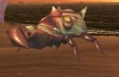 Heike-Crab.jpg